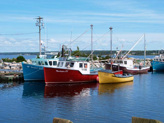 rsz fishing boats at gunning cove wharf